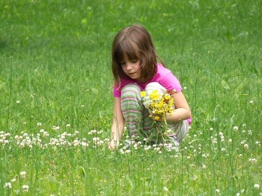 Wie verschenkt man den Frühling © smblake:pixabay picking-flowers-391610_1920