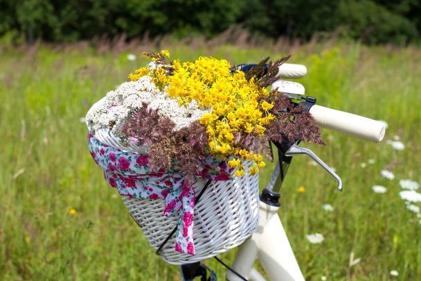 Die Kräuterhexe © KristineLejnice:pixabay bicycle-2553931_1920