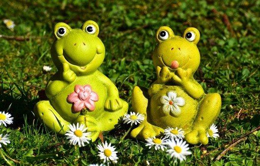frogs-2191758_1280